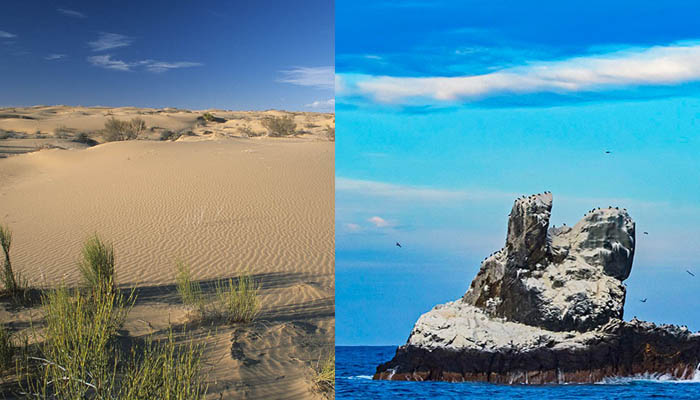desierto-de-altar-g01-p01-desierto-sonorense
