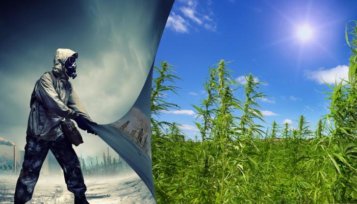 is-hemp-the-best-biofuel-1024x540