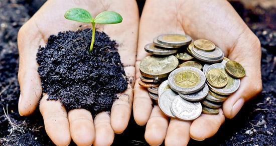 capital_social_responsabilidad_social_empresas_socialmente_responsables