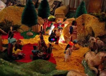 3fda26f0696 Por qué debes evitar el musgo en Navidad  – Pensemos Verde