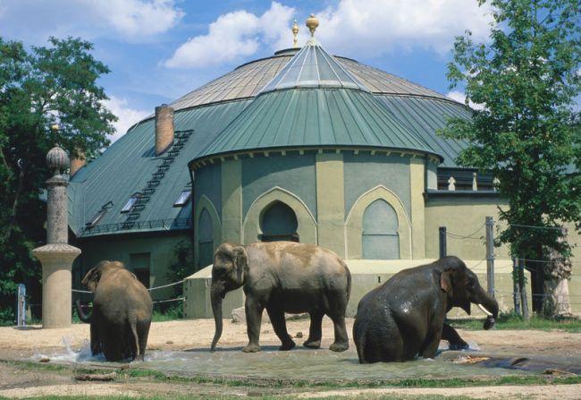 Elefantenhaus im Tierpark Hellabrunn, M?nchen, Oberbayern, Bayern, Deutschland